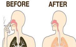 Sigara İçenler 3 Gün İçinde Vücudunuzdaki Toksinlerden Kurtulun
